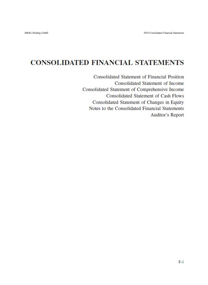 Consolidated Financial Statement 2010